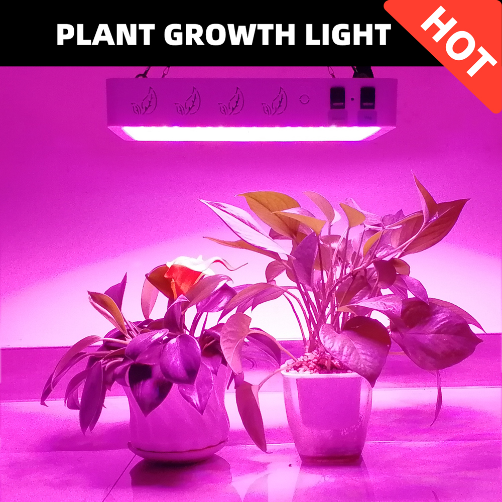 Growing Lamps LED Grow Light 600W 1000W 2000W Full Spectrum Plant Lighting For Plants Flowers Seedling Indoor Cultivation