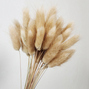60pcs/lot Natural Dried Flowers Colorful Lagurus Ovatus Rabbit Tail Grass Bouquet for Home Wedding Decoration Artificial Flowers(China)