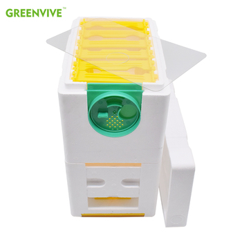 Multi-Functional Queen Bee Hive Plastic Foam Double Box Queen Rearing Beehive Bee Mating Box bee queen excluder queen bee repeller queen bee excluder trapping grid net equipment apiculture tools