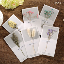 10pcs 9x16cm Creative Dry Flowers Greeting Card DIY Thanksgiving Blessing Birthday General Cards for Christmas Valentin
