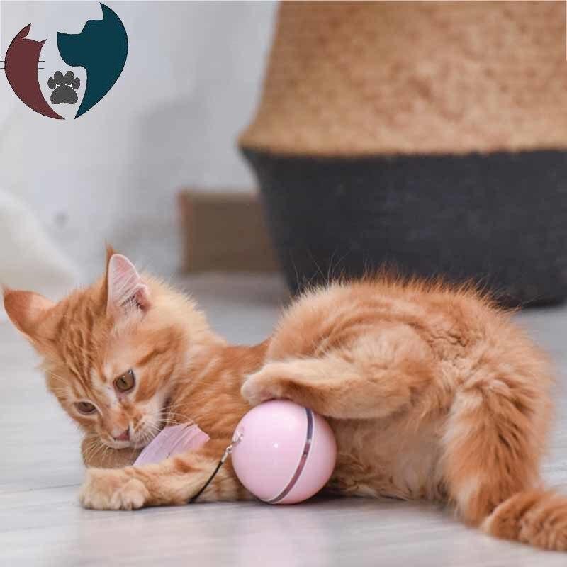Novo automático inteligente gato brinquedos bola interativa catnip usb recarregável auto rotativa colorido led pena sinos gatos gatinho brinquedos