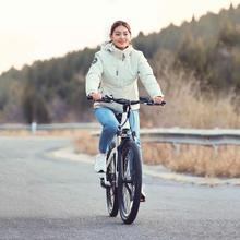 HIMO C26 Electrical mountain bike 48V hidden lithium battery 250w rear drive motor electrical bicycle digital biking emtb