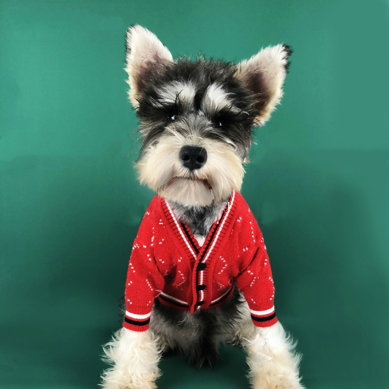 Fashion Dog Sweater Luxury Dogs Cotton Sweatshirt for Yorkshire Chihuahua Outfit Soft Coats for French Bulldog Pug Puppy Costume