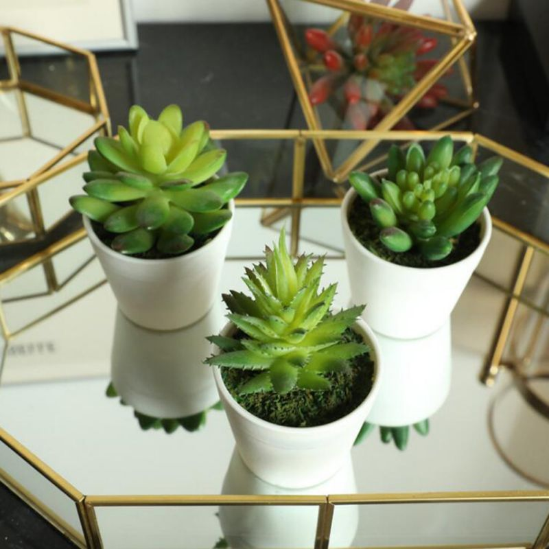 Artificial Succulent Plants Indoor Vivid Green Plants Small Potted Cactus Plants For Office Home Garden