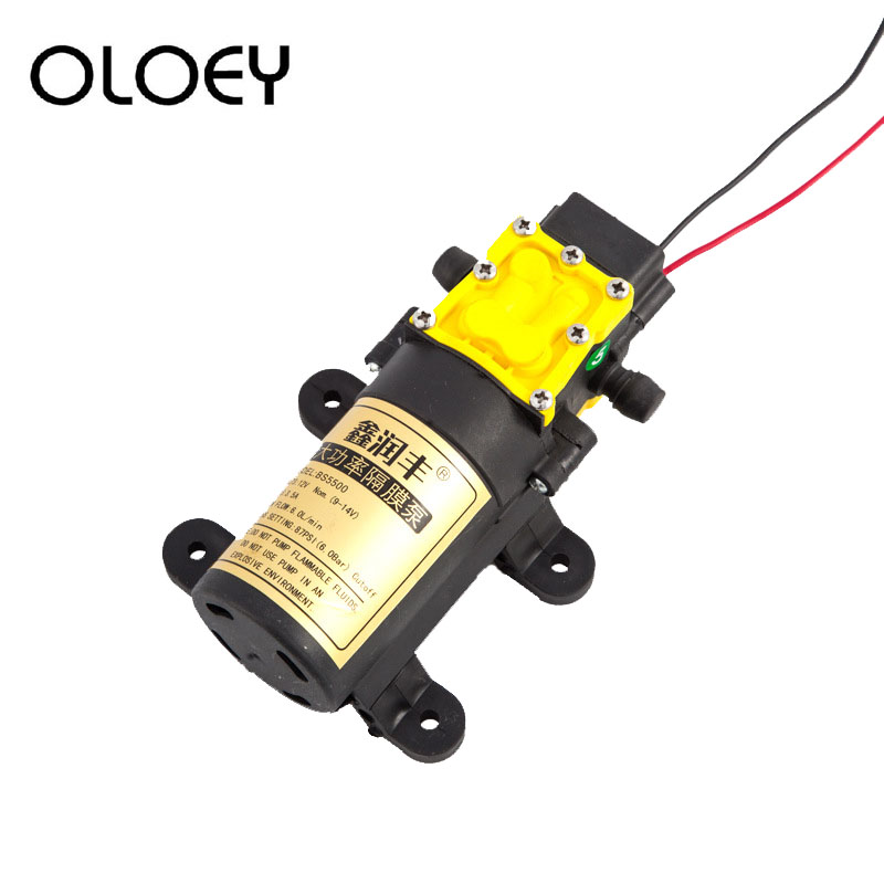 High Quality DC 12V 6L/min Agricultural Electric Large Flow Rate Water Pump Micro High Pressure Diaphragm Water Sprayer Car Wash