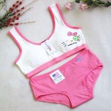 Meninas puberdade sutiã conjunto roupa interior das crianças sem anel de aço doce cor treinamento sutiãs para adolescentes algodão esporte conjunto