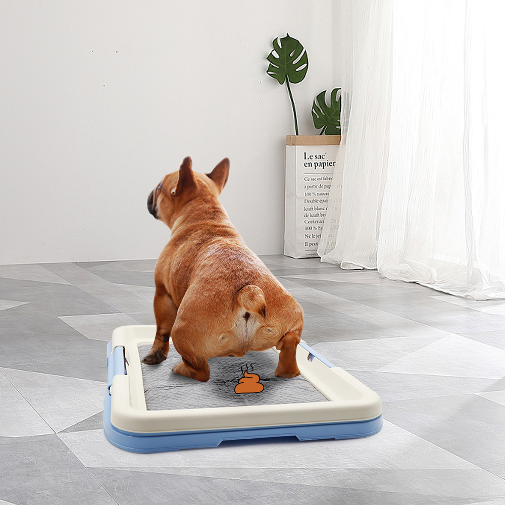 Portable and easy to Clean Dog Training Pad to Train Dogs for Potty and Toilet Indoor 3