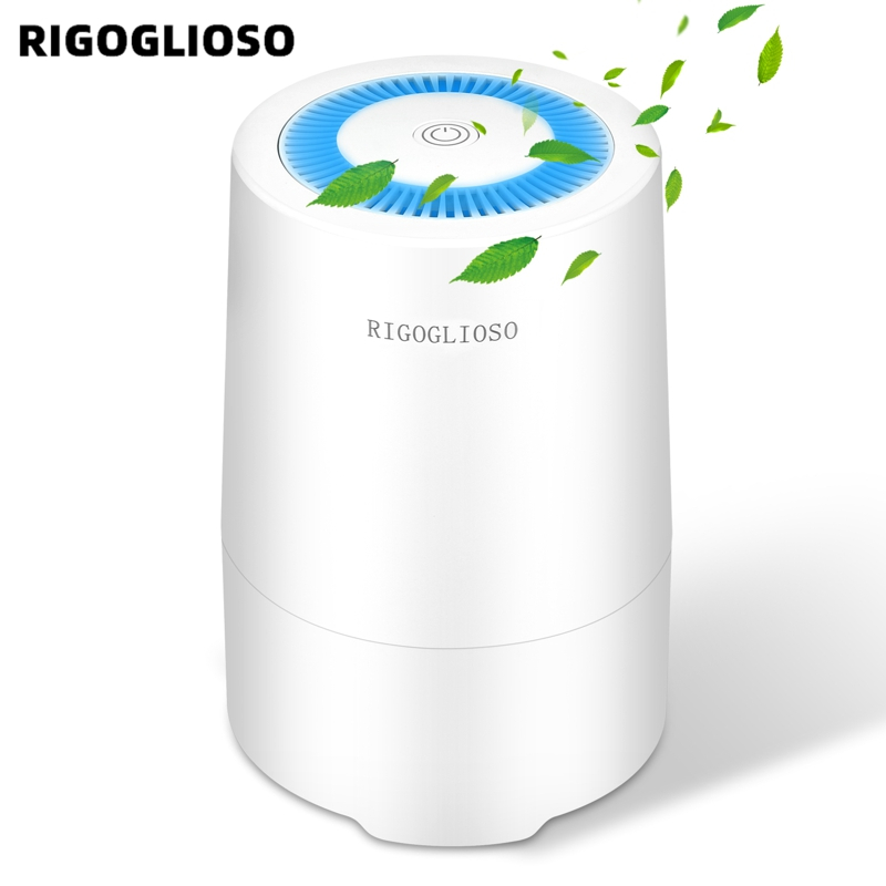 RIGOGLIOSO Air Purifier for Home with True HEPA Filter Night Light Portable Purifiers for Dust Smokers Pollen Pet Dander 900S