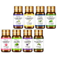 Pure Natural Essential Oils Aromatherapy Essential