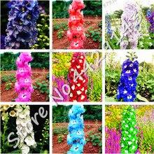 200 шт бонсай цветы дельфиниума красочные ракета Larkspur растения для дома садовые украшения бонсай посадки декоративных растений