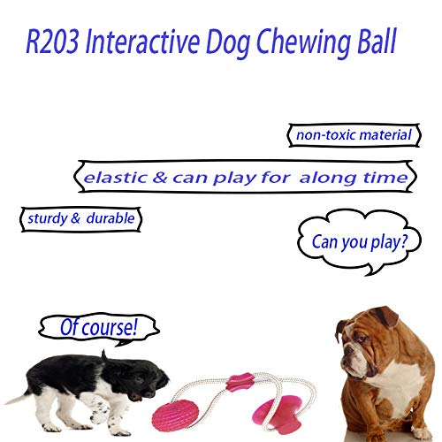 Suction Cup Dog Push Toy Redmogo