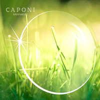 CAPONI 1.56 1.61 1.67 1.74 Prescription Customized Clear Lenses 2pcs/1 pair