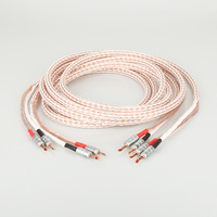 Pair 12TC Hifi Speaker Cable High Quality Pure OCC Speaker Wire With BFA Banana Jack