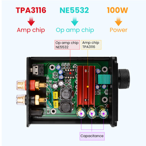 Image 5 - AIYIMA TPA3116 100W Subwoofer Audio Amplifier TPA3116D2 Mono Digital Power Amplifiers Amplificador With NE5532 OP AMP