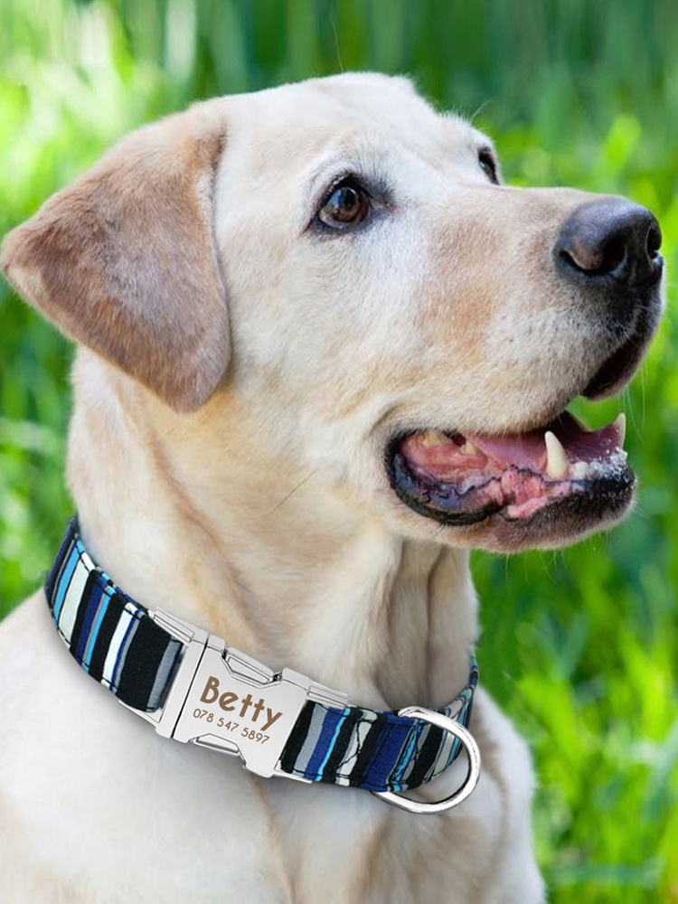 Large Dog Dog Neck Ring Scarf Circle Collar Collar Golden Retriever Neck Pet Dog Set Dog Tag ID Lettering