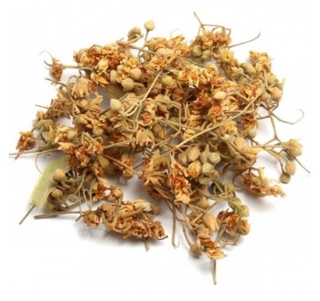 Thé de tilleul fleur de tilleul thé tisane fleur de tilleul anglais thé botanique soulagement du stress thé dépression anxiété épilepy thé
