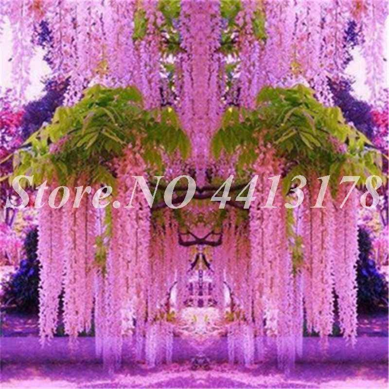 20 Leo Núi Wisteria Hoa Nhân Tạo Hoa Dụng Cụ Bào