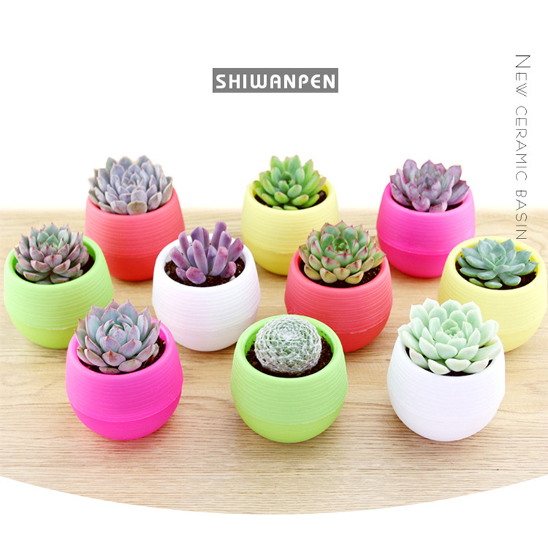 1pc Colorful Mini Potted Plants For Office Decoration Flower Pots Planters For Succulents Indoor Herb Garden Home Accessories