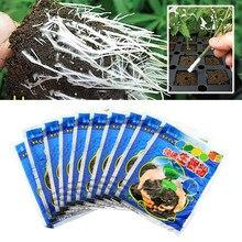 10 pces rápido enraizamento pó planta crescimento regulador para mudas bonsai árvore de corte fungicida enraizamento hormônios foliar fertilizante