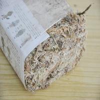 Musgo de água musgo seco phalaenopsis orquídeas soilless substrato cultivo solo 12l pacote comprimido # bo|Gramado artificial| |  -