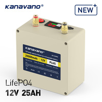 12V Rechargeable Battery Pack LiFePO4 with binding post BMS Portable Super Capacity lithium battery