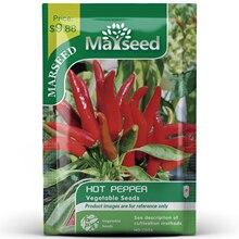 American Heirloom MARSEED Hot Pepper Vegetables Seedsplants Seedling Garden Outdoor