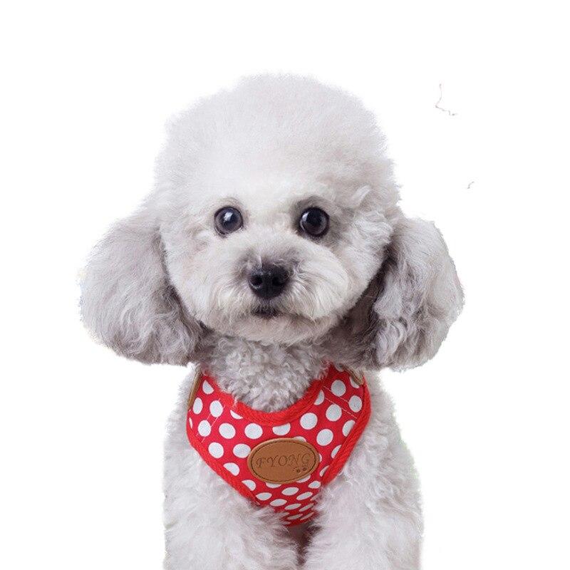 Dog Chain Puppy Dog Suspender Strap Lanyard Pet Chest Traction Teddy Unscalable Dog Vest Style Dog Lanyard Sub-Dog