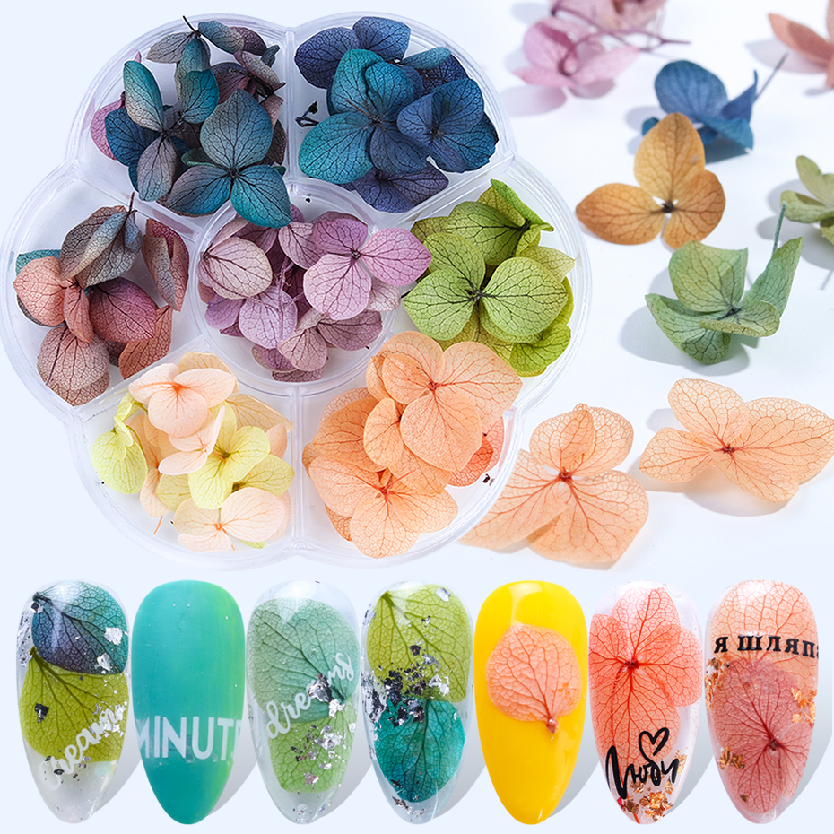 1box Dried Flowers Leaf Nail Decoration Gradient Petal Dry Floral Sticker 3D Acrylic Nail Art Jewelry UV Gel Tip Manicure BE1524