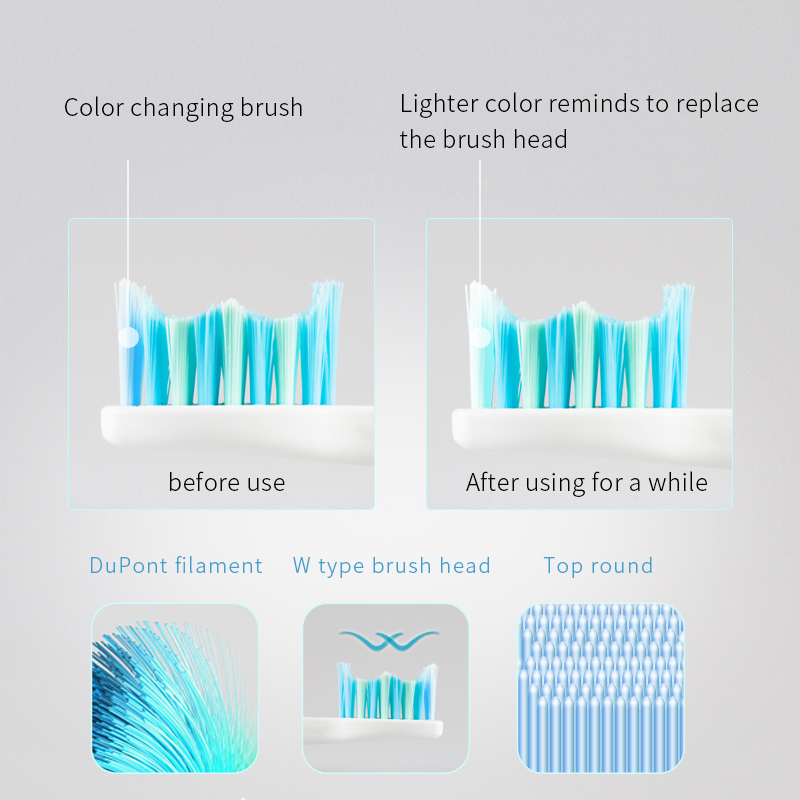 SEAGO Electric Toothbrush Non-Rechargeable Waterproof Adult Tooth brush Massage Gums Teeth White with 2 Brush Heads SG503
