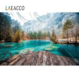 Natural Backgrounds For Photography Mountain Forest Tree Lake Stone Rock Scenic Photographic Backdrop Photo Studio Photocall