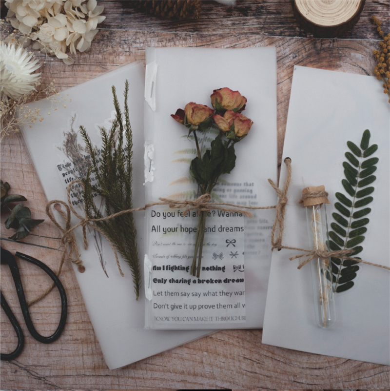 Coloffice Creative Plant Dried Flower Set Series font b PET b font Sticker Pack Creative Handbook