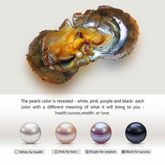 4 Pieces Seawater Cultured Love Wish Pearl Oyster 6 7 mm Pearl Oyster for Gift
