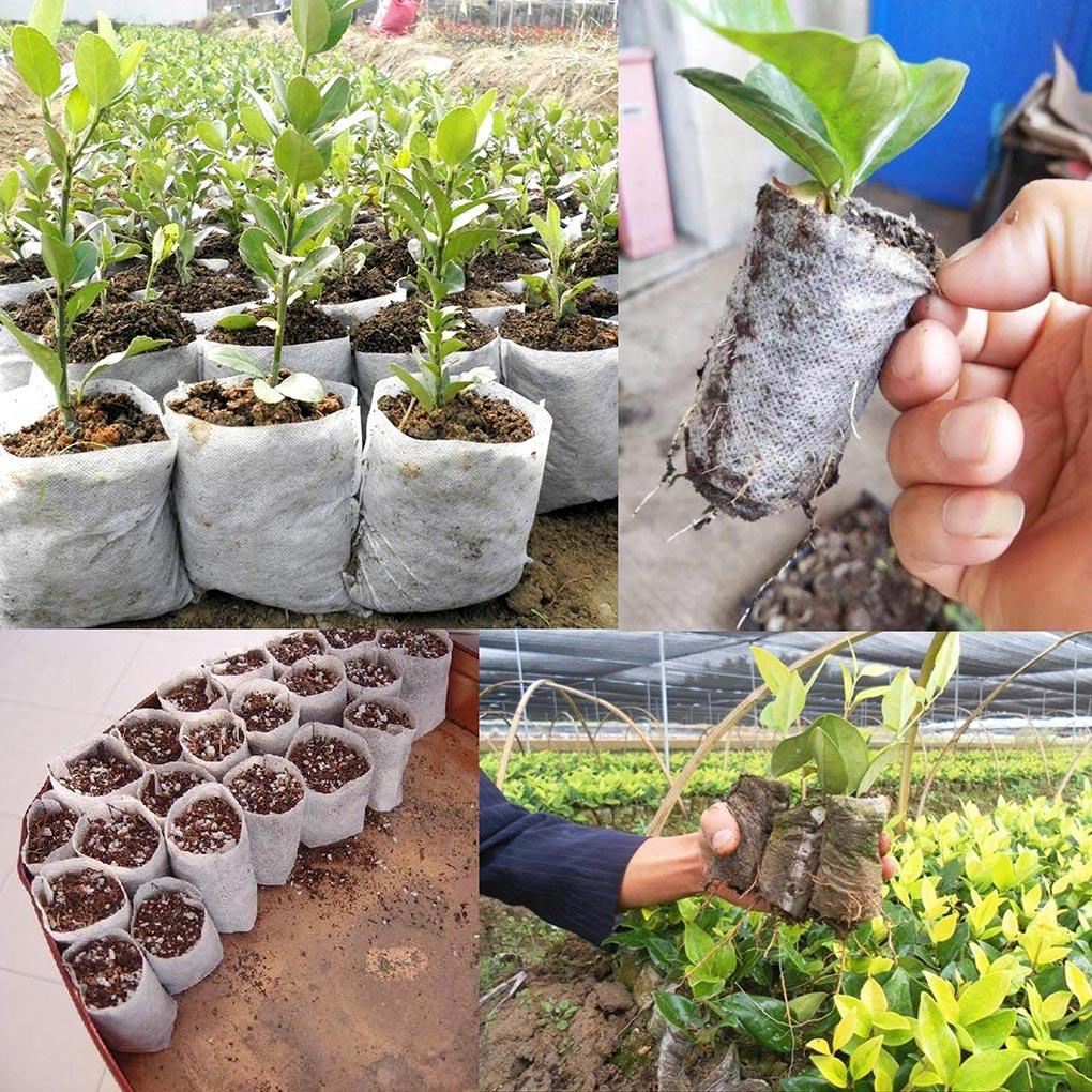 100pcs Biodegradable Seed Starter Bags Breathable Plant Nursing Growing Pouch Vegetable Flower Plant Grow Bag 8x10cm|Grow Bags| |  - title=