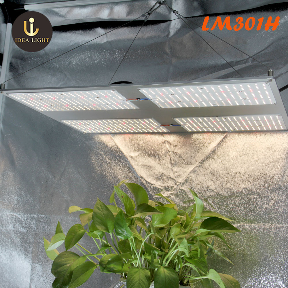 2020 New Led Plant Lamp For Indoor Plants Flower Seeds Lm301h 480w Samsung Lm301b Full Spectrum Quantum Board Led Grow Light