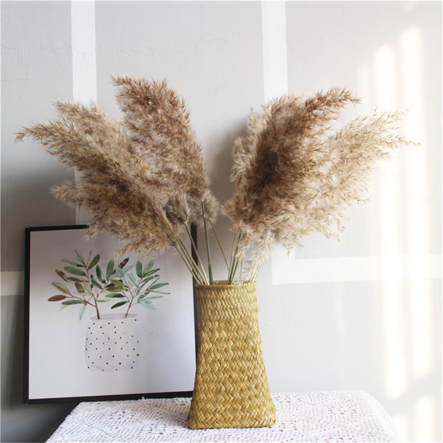 Free Shipping Dried Pampas Grass Decor Wedding Flower Bunch Natural Plants for Home Christmas Decorations 2021 4