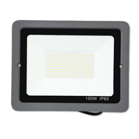 100W Led reflector Ip65 Waterpro de Led lu Waterproof of Flood Lights Outdoor AC220V Spotlight led spotlight