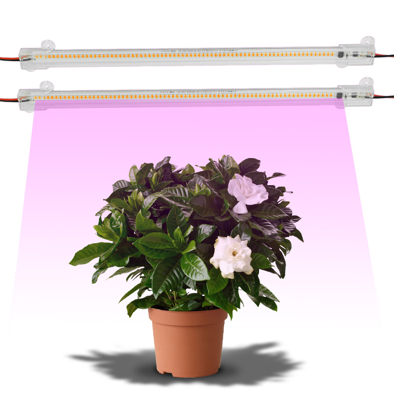 LED Grow Lamp Full Spectrum 220V Phyto Lamp 30cm 50cm Clear Shell For Indoor Plants Flower Hydroponics Grow Flower Seedling