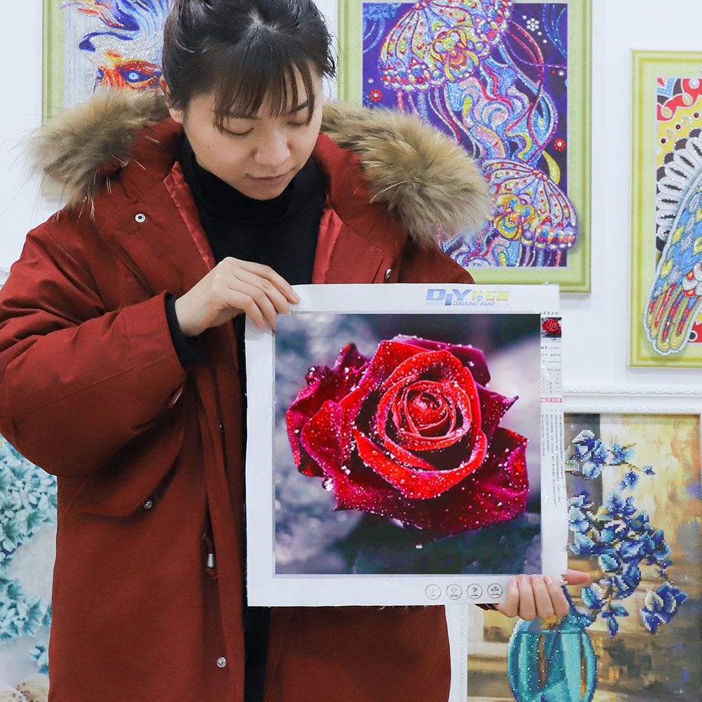 Meian 5d diy full drill diamond painting flower Rose 5d diamond mosaic romantic gifts for girlfriend/wife Needlework mosaic art