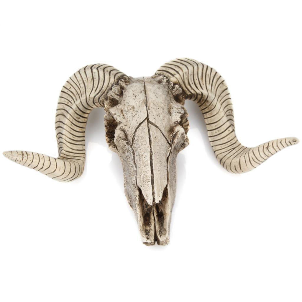 Head Single Wall Hook Hanger Animal Shaped Coat Hat Hook Rustic Decorative Gift Skull Sheep's Head Head