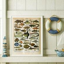 Océano mar Animal Vintage Carta de la vida de la biología cartel educativo e impresiones pintura arte cuadros de pared para la decoración del hogar de la sala de estar