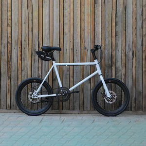 20 inch bike Single speed fixie Bike dsic 20 inch bicycle freewheel frame mini bicycle fit height 155cm to 180cm
