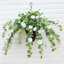 Morning glory petunia plastic flower artificial flower artificial flower rattan decoration hanging wall hanging orchid art
