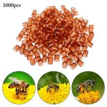 1000 PCS Beekeeping Bee Queen Rearing Plastic Brown Cells Cages Room Cups Beekeepers Equipment for garden suppliesTools gift