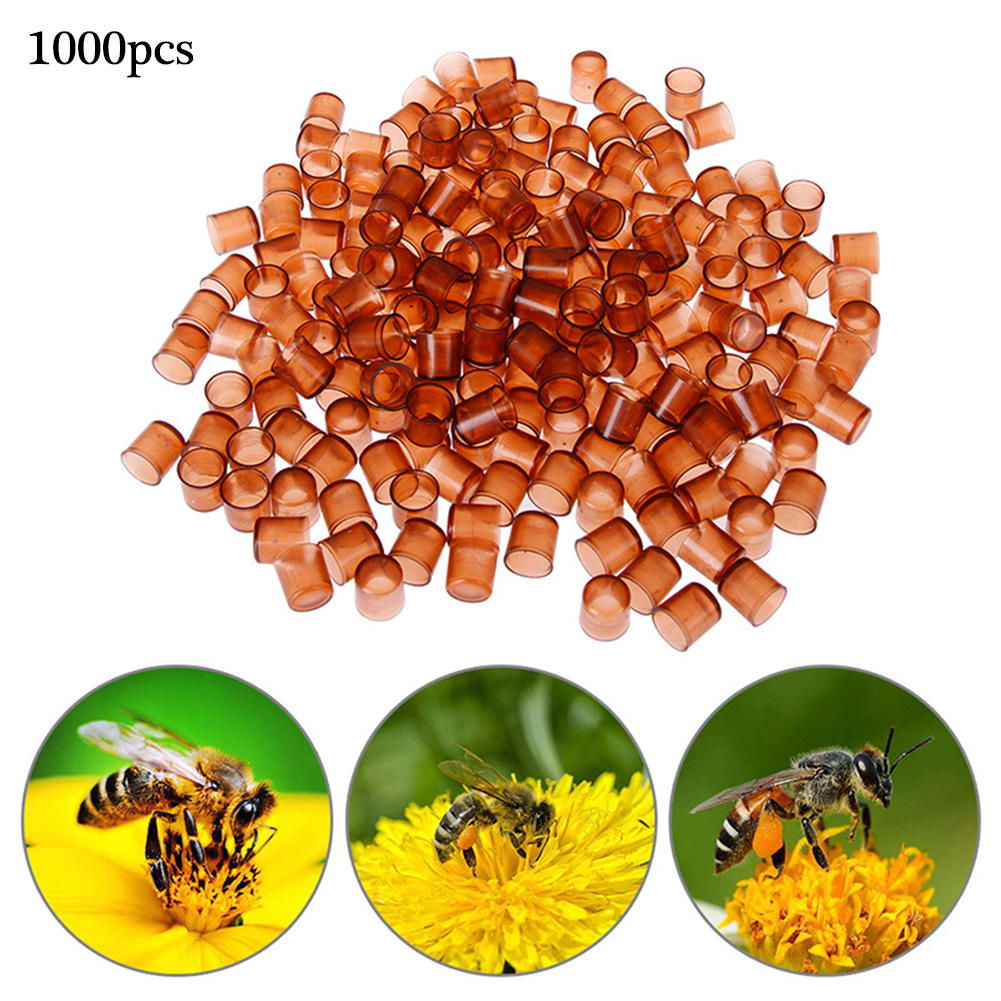 1000pcs Fast Delivery Beekeeping Bee Queen Rearing Plastic Brown Cell Cage Room Cup Beekeeper Equipment For Garden Supplies Tool