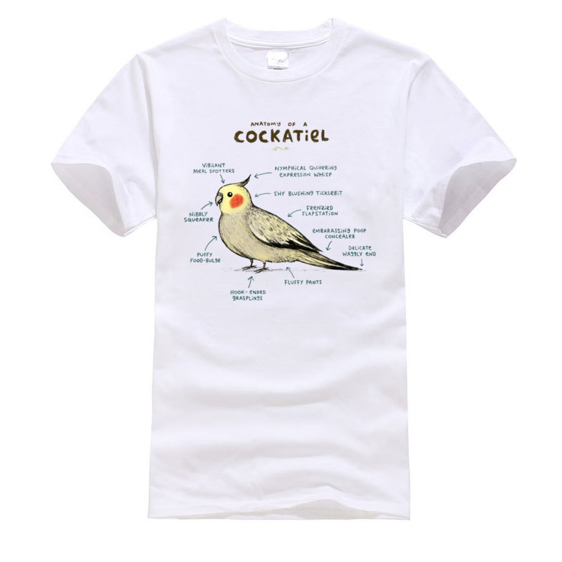 Cotton Young Short Sleeve Anatomy_of_a_Cockatiel_140 T-Shirt Custom Tops Shirts Hot Sale Casual Round Collar Sweatshirts Anatomy_of_a_Cockatiel_140 white