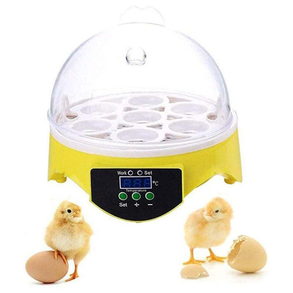 7 ovos digital mini chocadeira pequena galinha