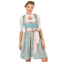 Germany Oktoberfest Beer Girl Dirndl Dress Bavarian Traditional Party Beer Maid Wench Cosplay Costume(China)