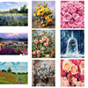 Oil Painting By Numbers Flower On Canvas With Frame Handmade Drawing Paints For Adults Picture Coloring By Number Decoration Art