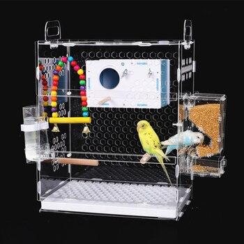 Transparent Parrot Cage 1
