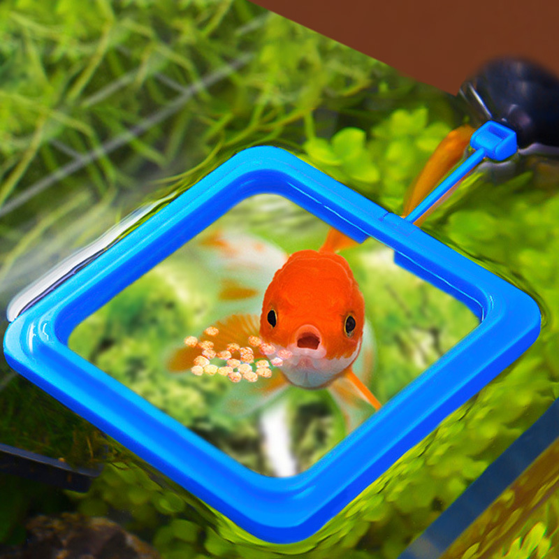 Aquarium Fish Feeding Ring Floating Fish Tank Feeder Station Round Square Fish Food Tray With Suction Cup Fish Tank Accessories